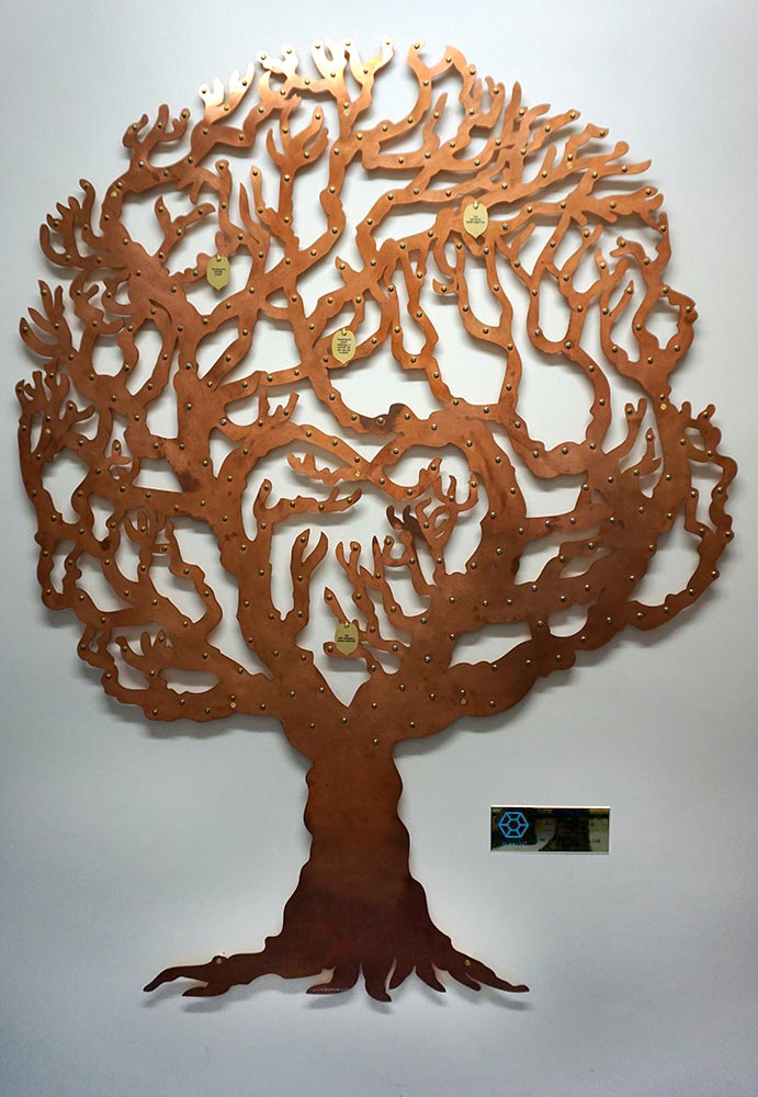 Castle Hill Hospital breast screening unit's copper fundraising tree by Bronwen Glazzard