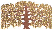 Espalier copper pear tree by Bronwen Glazzard of Metallic Garden
